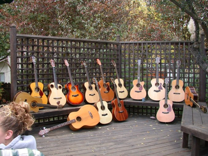 14 guitars arranged in a row on the deck